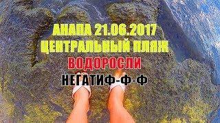 АНАПА 21.06.2017 ЦЕНТРАЛЬНЫЙ ПЛЯЖ ВОДОРОСЛИ КАМКА