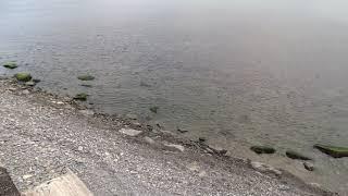 Анапа сброс дерьма в море ужасный запашок канализации на пляже