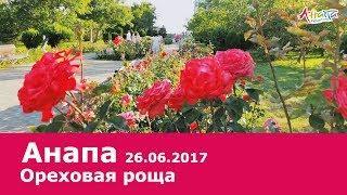 Анапа, парк Ореховая роща 26.06.2017, погода