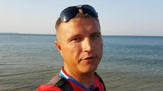 Анапа. Витязево Погода. 12.08.2017 Дельфины