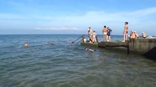 Море Анапы сегодня 14.07.2017, +20+21 !!!