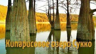 Озеро Сукко (Анапа). Кипарисовое озеро в Сукко