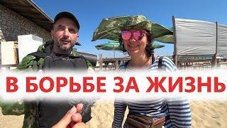 #Анапа ПУТЬ ОДОЛЕЕТ ИДУЩИЙ! Отдых в Витязево 2019