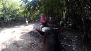 Конные прогулки в Сукко 1
