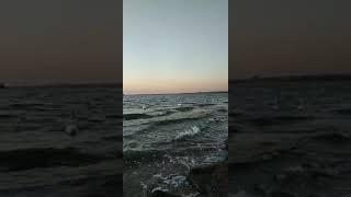 Пляж Анапа. Лебеди в Анапе. Закат в Анапе. Море Россия. Отдых в России.Где отдыхать на море в России