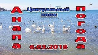Анапа. Погода. 6.03.2018 жара и лебеди на центральном пляже
