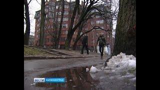 Синоптики: холодная погода придёт в январе и задержится до последних чисел марта