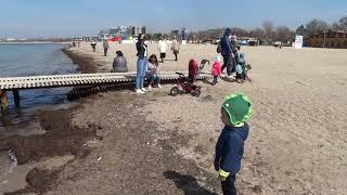 Анапа видео апрель 2019 новости с моря
