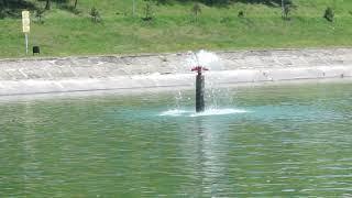 Открываем купальный сезон;) 1 июня. Майкоп. #252