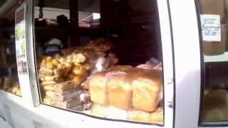 Анапа 2017 цены рынок центр города Анапы. Food Prices 2017 in Russia
