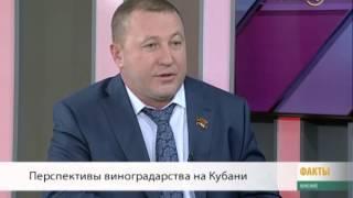 Дмитрий Козаченко: красная цена за бутылку кубанского вина — 500 рублей