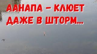 #АНАПА - 6.00 УТРА - РЫБАЛКА - ПОХОЛОДАЛО... ШТОРМ? 6.08.2019