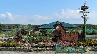 Парк ДОДО Экскурсия в Анапе