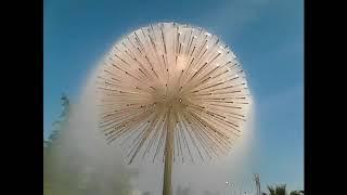 ⛔Сочи Лазаревское красивый фонтан