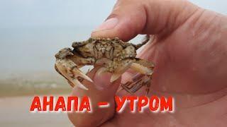 #АНАПА - ТАКОГО ВЫ ДАВНО НЕ ВИДЕЛИ!!! ПЛЯЖ КАВКАЗ