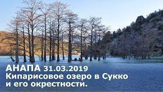 Кипарисовое озеро в Сукко и его окрестности. #АНАПА 31.03.2019.