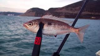 Рыбалка 1 января 2018 г. к. Анапа