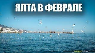 Крым 2019 Лето в Феврале Выходные в ЯЛТЕ.