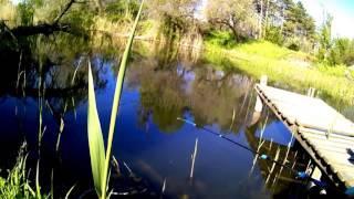 Анапа Рыбалка БАБУЛЯ в 75 ЛЕТ ловит рыБУ  | Travel Russia VLOG 2017