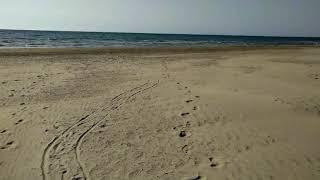 Анапа шприцы на пляже (возле пляжа отеля Довиль)