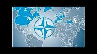 Учения НАТО: в Грузии начались военные учения НАТО с участием Украины (01.08.18 08:24) «Общество