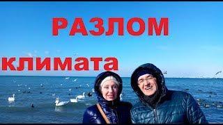 Между прочим, почему из Сибири переезжают в Гостагаевскую