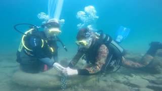 Дайв клуб Дискавери  Анапа  Замок на счастье под водой