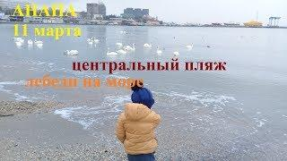 Анапа. 11 марта. Центральный пляж.Набережная. Улица Горького.
