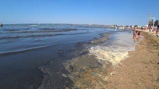 Анапа пик сезона. Грязное море, полные пляжи, мнение отдыхающих, цены и развлечения. (Папа Может)