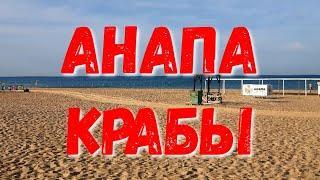 #АНАПА - НАШЕСТВИЕ КРАБОВ - УТРО НА МОРЕ