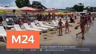 На пляжах Анапы запретили купание из-за холодной воды в море - Москва 24