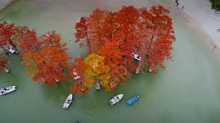Кипарисовое озеро, поселок Сукко Краснодарский край
