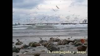 Анапа центральный пляж Море, шторм, чайки, пирс.