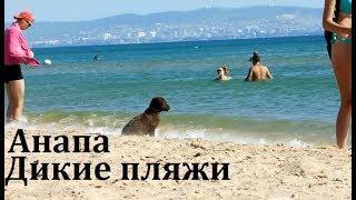 Анапа. Море. Дикие пляжи Витязево