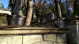 Львов 15 кладбище