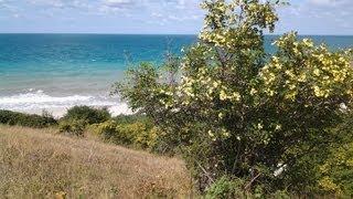 Лучшие пляжи Анапы (на мой взгляд). Пляж №1 (между Варваровкой и Сукко рядом с гостиницей Шингари).