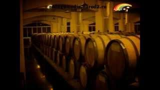 От винограда до вина. Уборка винограда на Кубани