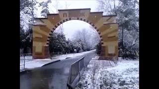 #Анапа. Море и пляж Кавказ в Рождество в #Анапе в снег (07.01.2019)