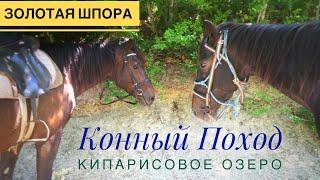 Конные прогулки в Анапе. 89996057341