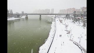 Экологическая ситуация в Краснодарском крае вызвала опасения у экспертов