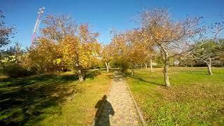 "Прогулки по Анапе - парк ""Ореховая роща"""