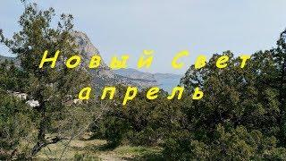 Крым, Новый Свет 2018, тропа Голицына. Купание в апрельском море и катер